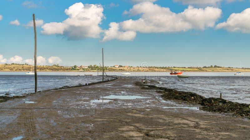 Болота Oare, Англия, Великобритания стоковое фото