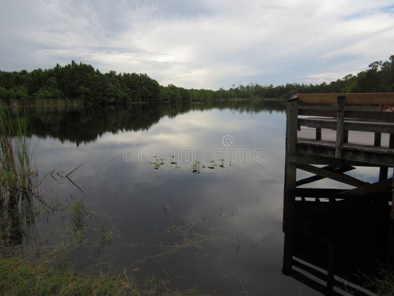 Болотистое озеро с неподвижными водой и небом стоковое изображение rf