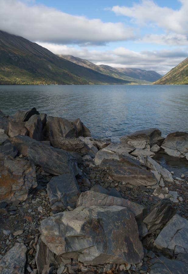 Больдэр заполнил пляж на аляскском озере стоковая фотография