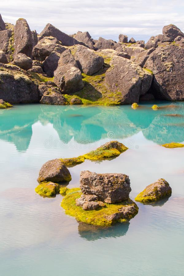 Больдэр отразил в зеленом бассейне стоковое фото