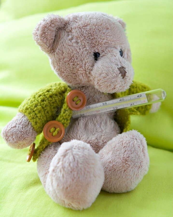 больной медведя стоковая фотография rf