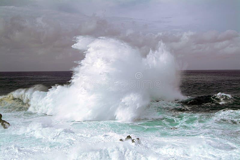 Большая волна ломает над вулканическими породами северного острова Мадейры в Атлантическом океане стоковые изображения rf