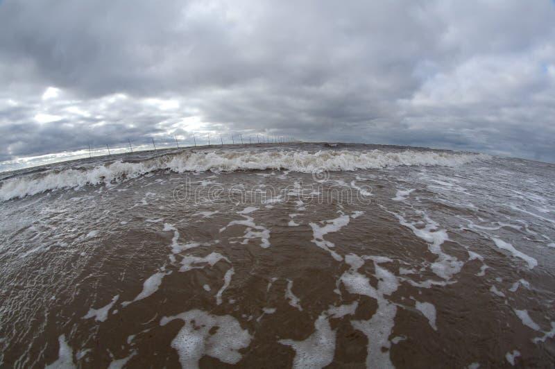 большая волна океана стоковое изображение