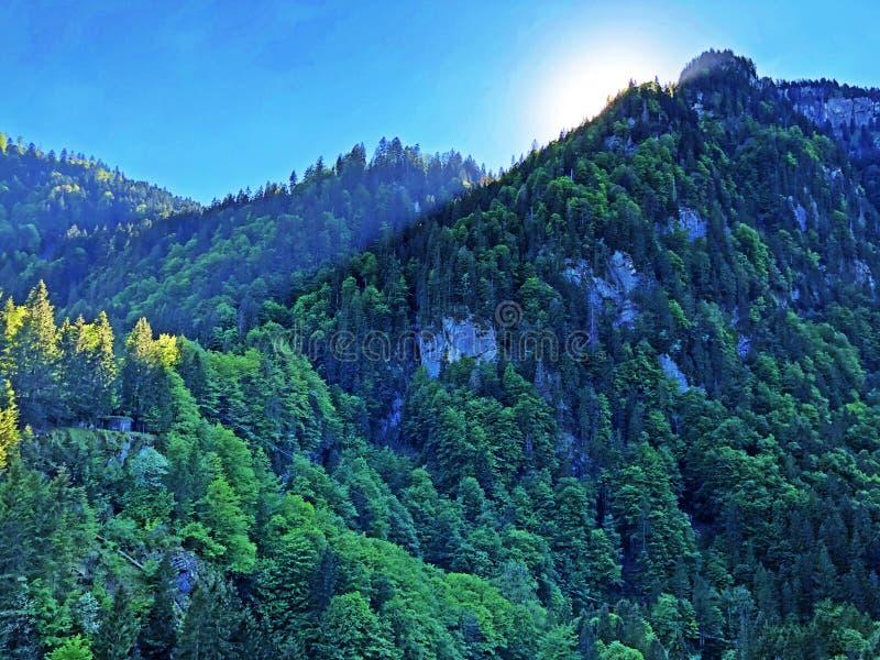 Большая гора Aubrig над долиной Wagital или Waegital и высокогорным озером Wagitalersee Waegitalersee, Innerthal стоковая фотография