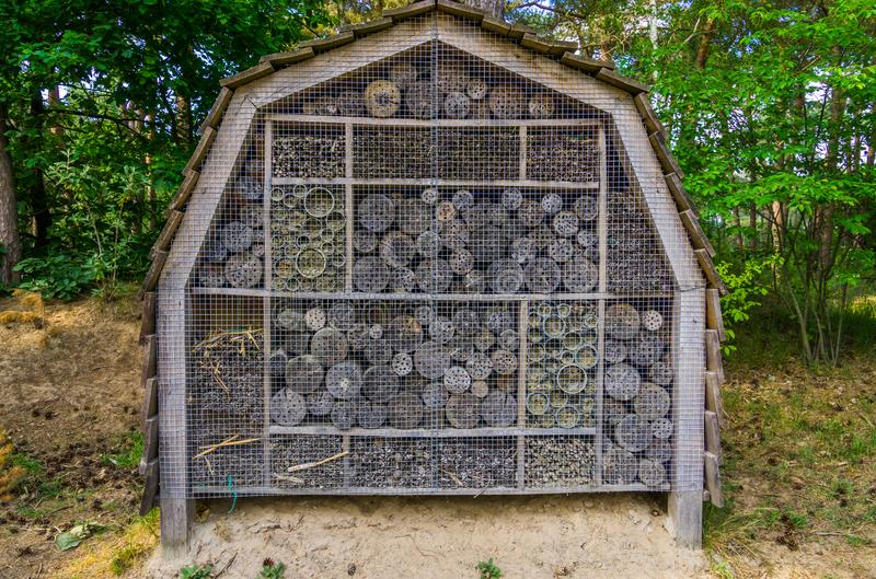 Большая гостиница насекомого в лесе, укрытие для пчел и другие насекомые стоковые изображения