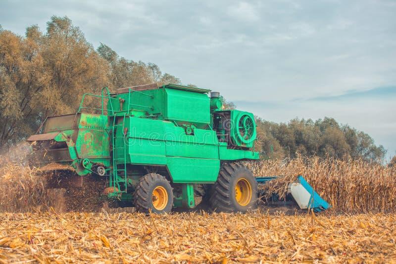 Большая жатка зернокомбайна жмет мозоль на поле на солнечный день стоковые фото