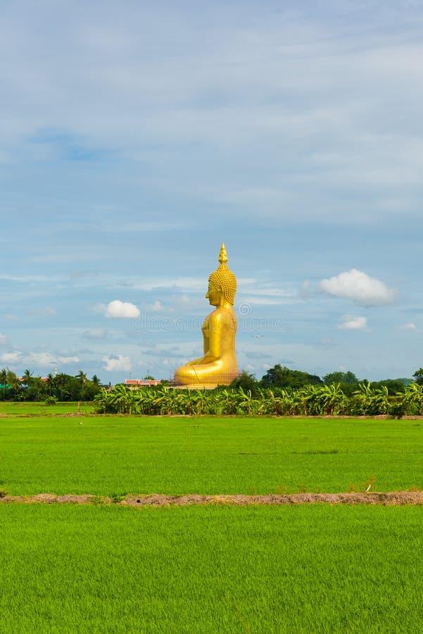 Большая золотая статуя Будды на провинции angthong виска Wat Muang стоковые изображения rf