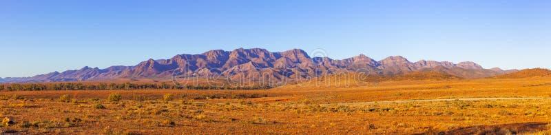 Большая панорама рядов щепок стоковое изображение rf