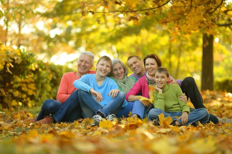 Большая семья имея потеху стоковые изображения