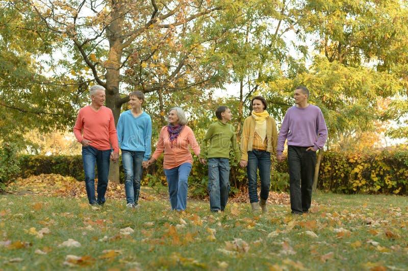 Большая семья имея потеху стоковое фото rf