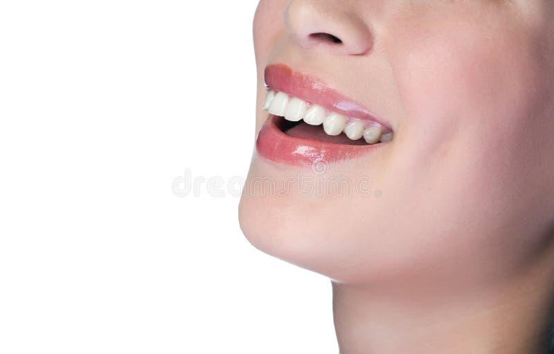 большая ся женщина зубов стоковая фотография rf