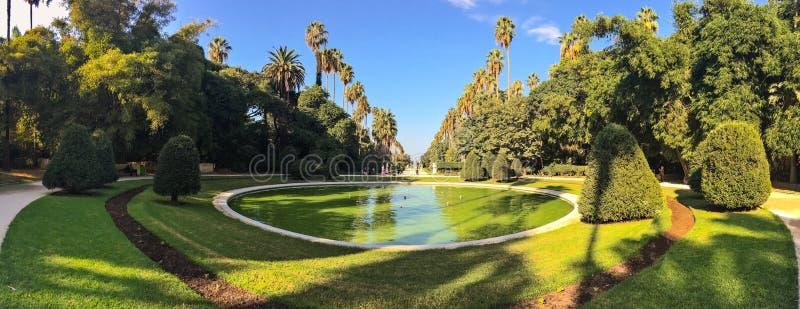 Большие бассейн и деревья в ботаническом саде Hamma в Алжире Было установлено в 1832 и теперь все еще рассматривало один из больш стоковое изображение