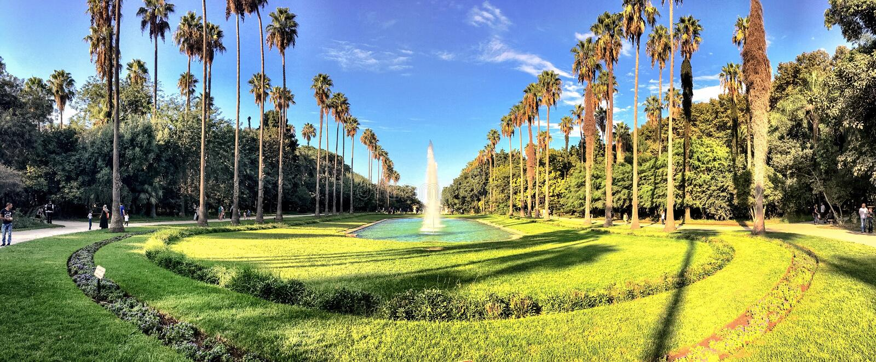 Большие бассейн и деревья в ботаническом саде Hamma в Алжире Было установлено в 1832 и теперь все еще рассматривало один из больш стоковые изображения rf