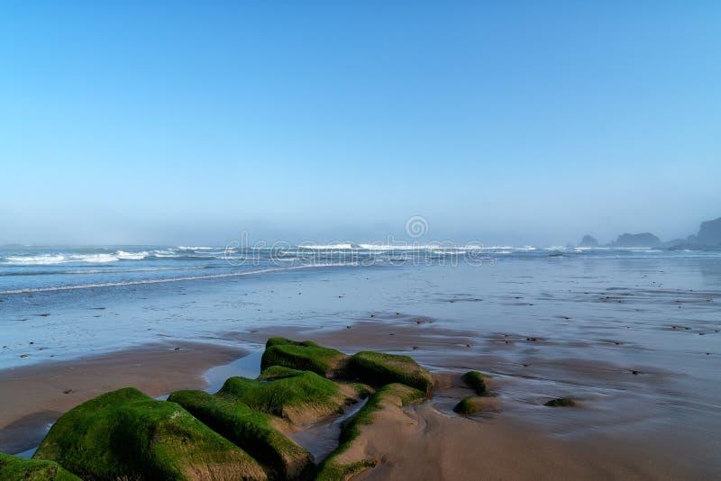 Большие волны в Атлантическом океане - идеальном прибое в пустыне Марокко, Африки стоковые изображения