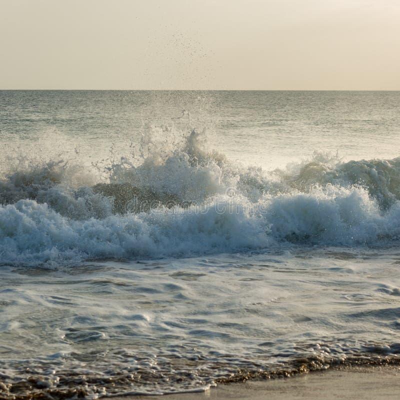 Большие волны в океане стоковое фото rf
