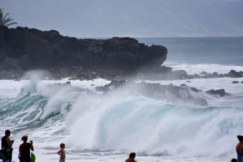 Большие волны на пляже Оаху Гавайских островах Waimea стоковое изображение