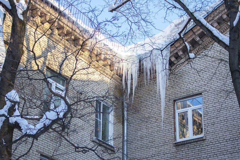 Большие длинные икры, висящие на крыше жилого здания, холодный зимний ледяной ледяной природой Заморозка ледяной воды у кирпича стоковые фотографии rf