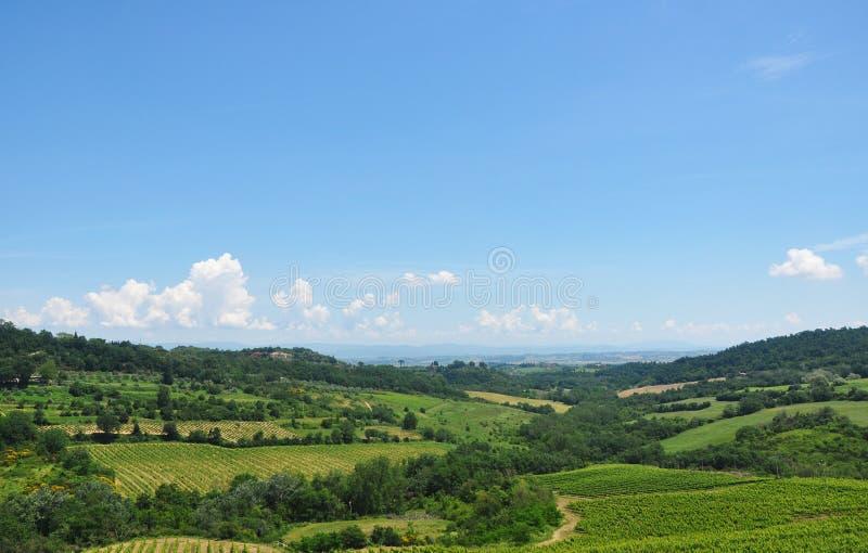 Большие итальянские поля с вегетацией стоковое изображение