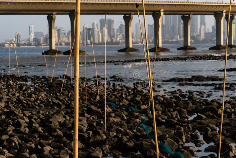 Большие ловушки рыб на скалистом пляже стоковые изображения rf