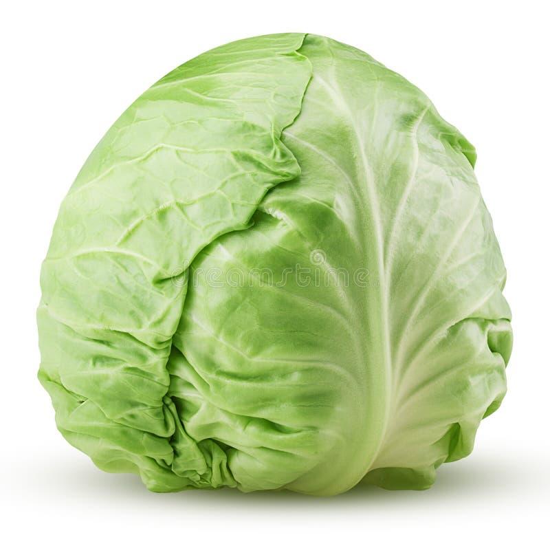 большие овощи головки зеленого цвета капусты стоковые фотографии rf