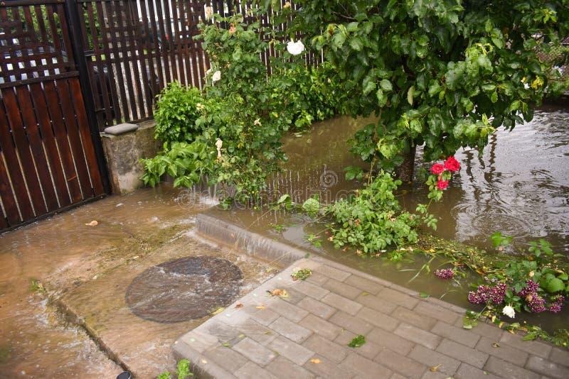 Большие потоки воды после массивного дождя шторма Сад и заводы покрыты с грязной водой Много повреждений после тяжелого стоковые фото