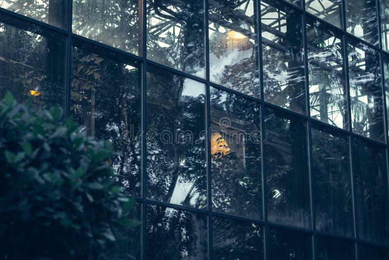 Большие стеклянные окна в парнике в раннем утре стоковое изображение rf