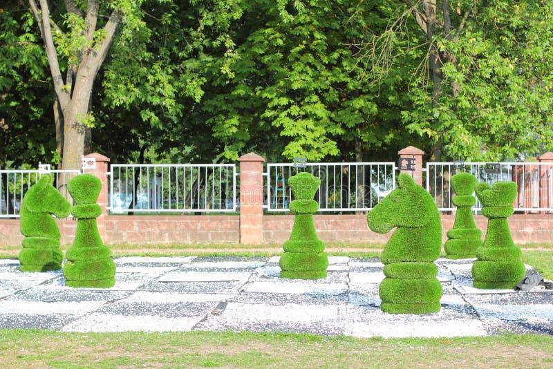 Большие шахматные фигуры украшенные с зеленой травой стоковые изображения rf