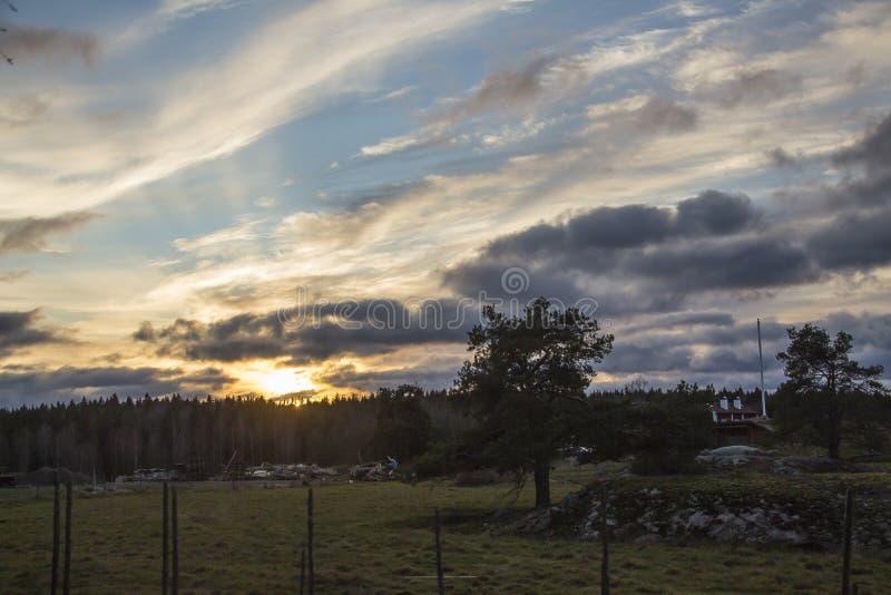 Больший светлый дисплей на Tyresta стоковые фотографии rf