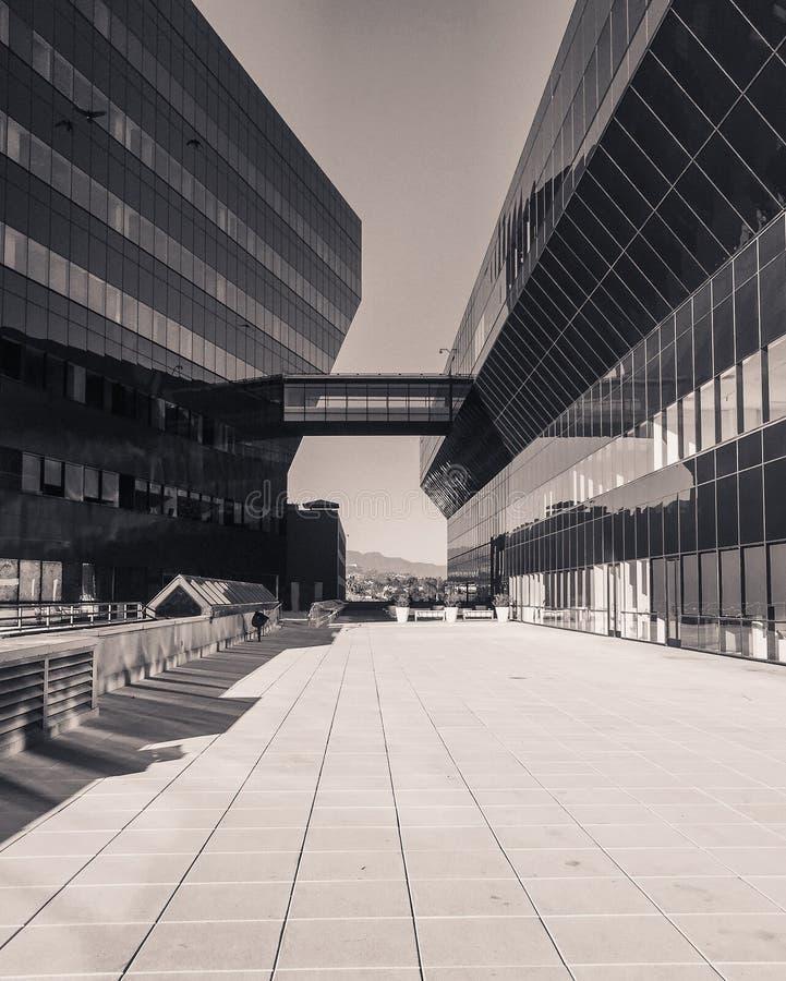 2 больших архитектурноакустических здания с взглядом горизонта стоковые изображения