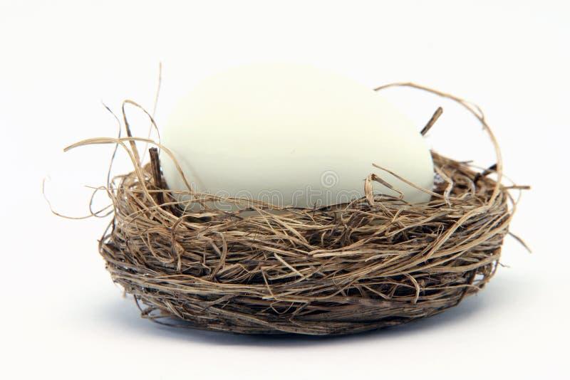 большое гнездй яичка малое стоковое изображение