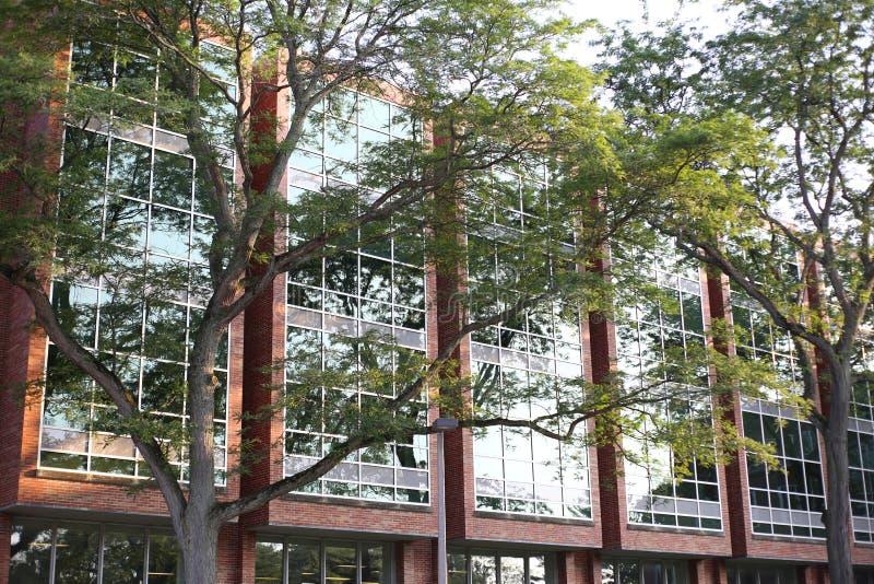 Большое здание за деревьями стоковая фотография rf
