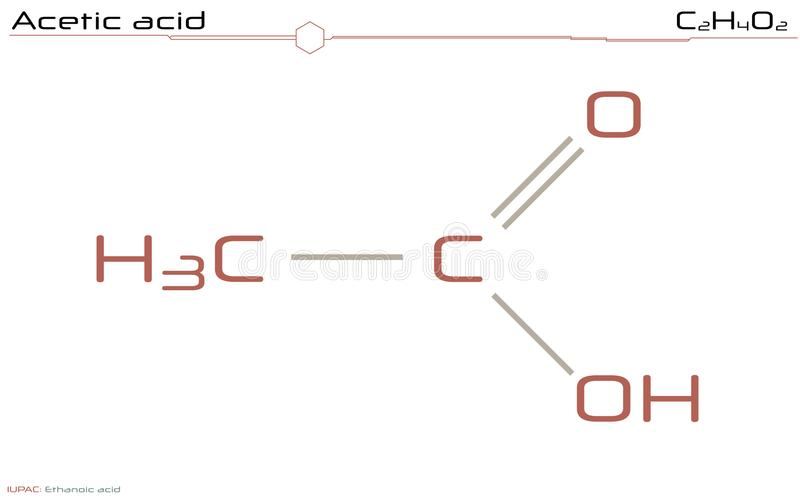 Большое и детальное infographic молекулы укусной кислоты иллюстрация вектора