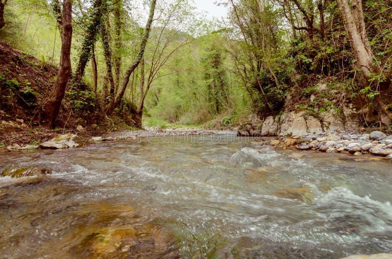 Большое место, который нужно ослабить в национальном парке Италии Pollino стоковые изображения rf