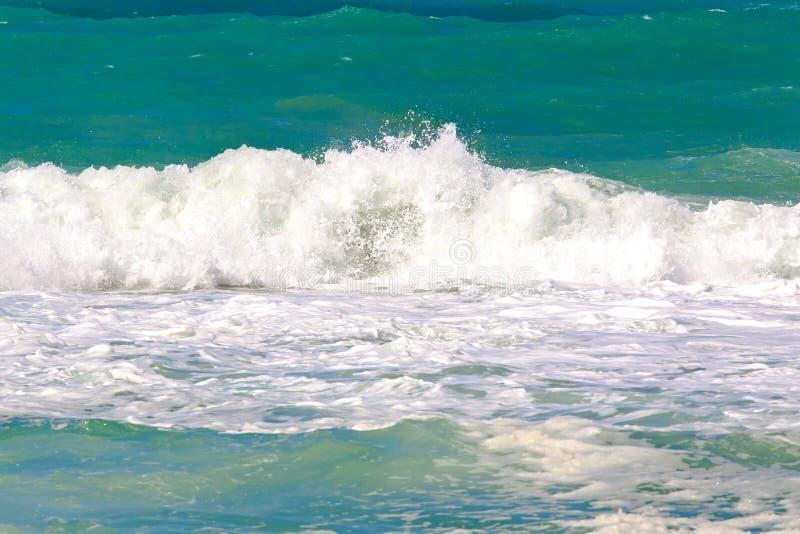 большое море стоковое фото rf