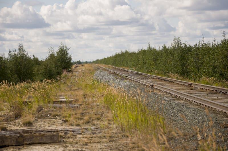 Большое поле осени с деревьями далеко и облаками в голубом небе Рельс для поезда Путешествовать через Россию и большие расстояния стоковая фотография rf