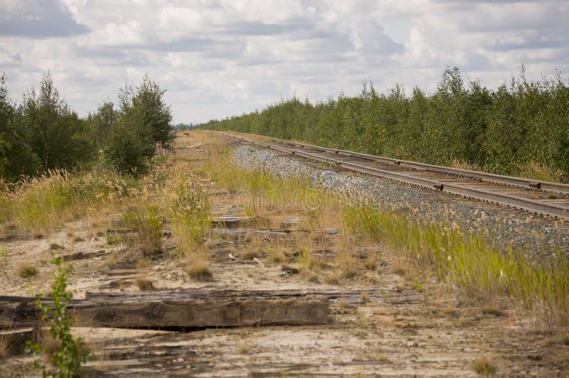 Большое поле осени с деревьями далеко и облаками в голубом небе Рельс для поезда Путешествовать через Россию и большие расстояния стоковые фото