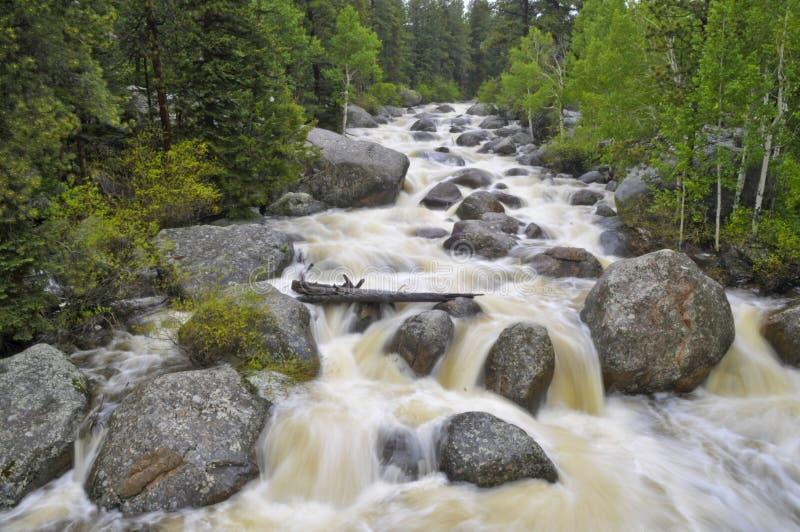 большое река thompson стоковая фотография