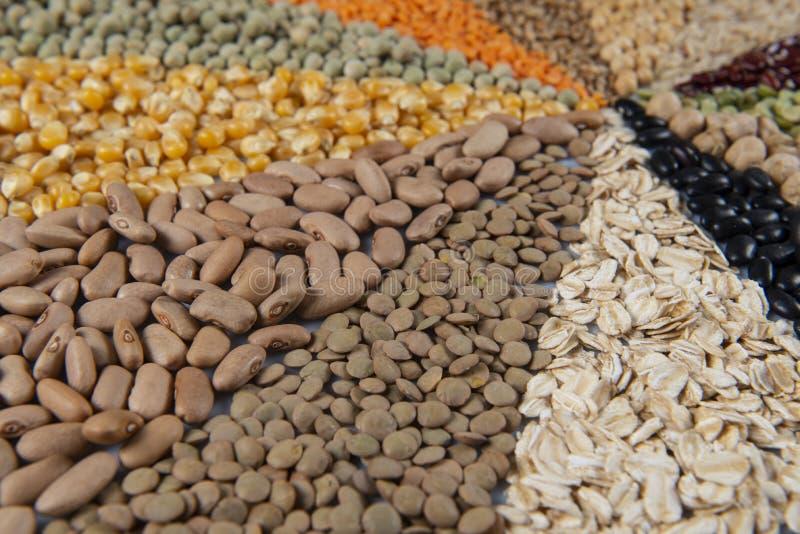 Большое собрание различных хлопьев и съестных семян стоковое изображение rf