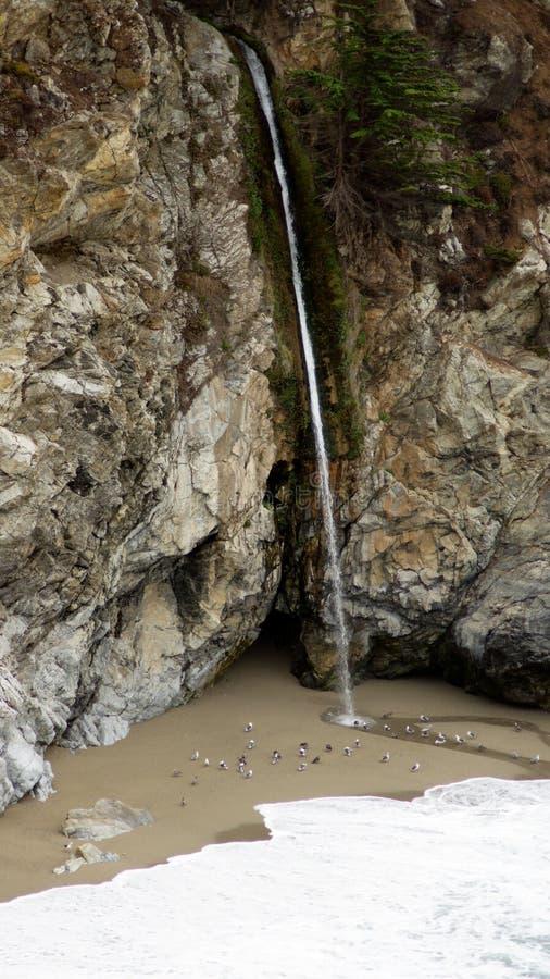 БОЛЬШОЕ SUR, КАЛИФОРНИЯ, СОЕДИНЕННЫЕ ШТАТЫ - 7-ОЕ ОКТЯБРЯ 2014: Падения McWay водопад в 80 ног устроенный в ожогах Джулии Pfeiffe стоковое фото rf