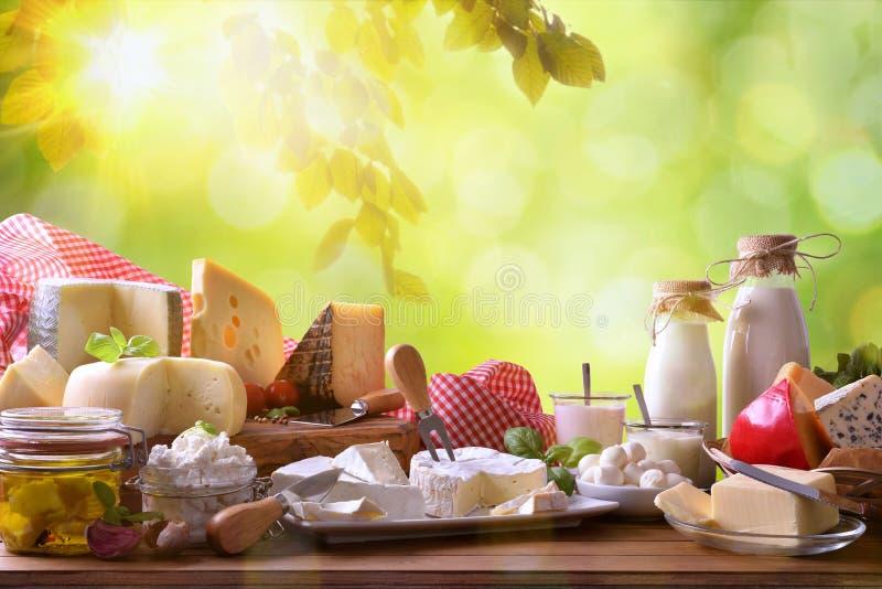 Большой ассортимент artisanal молочных продучтов в природе стоковая фотография rf