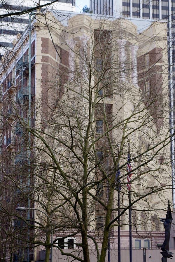 Большой городской строя центр города настенной росписи, Портленд, Орегон, США стоковое изображение rf