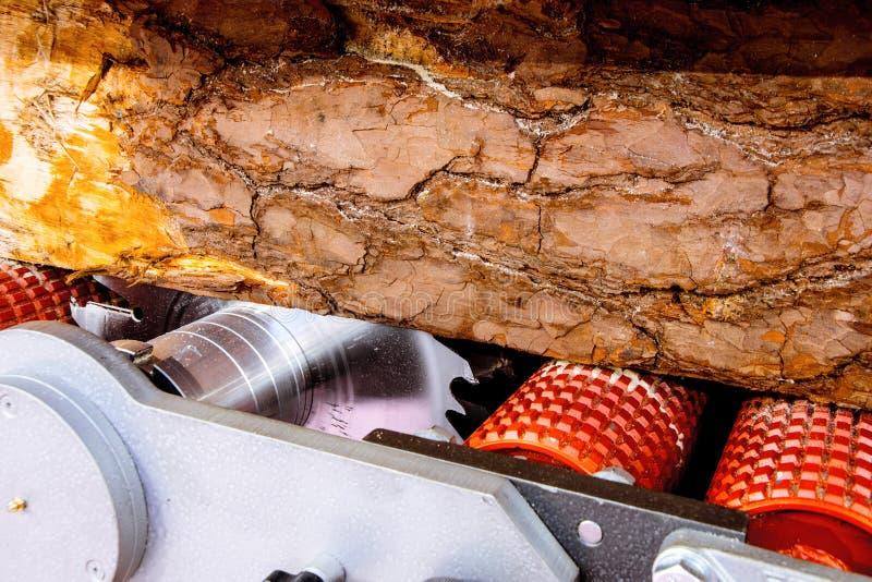 Большой журнал лежит на рицинусах лесопилки стоковые фото