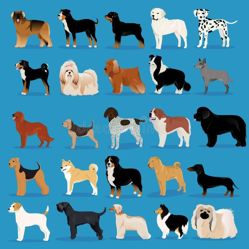 Большой комплект собак бесплатная иллюстрация