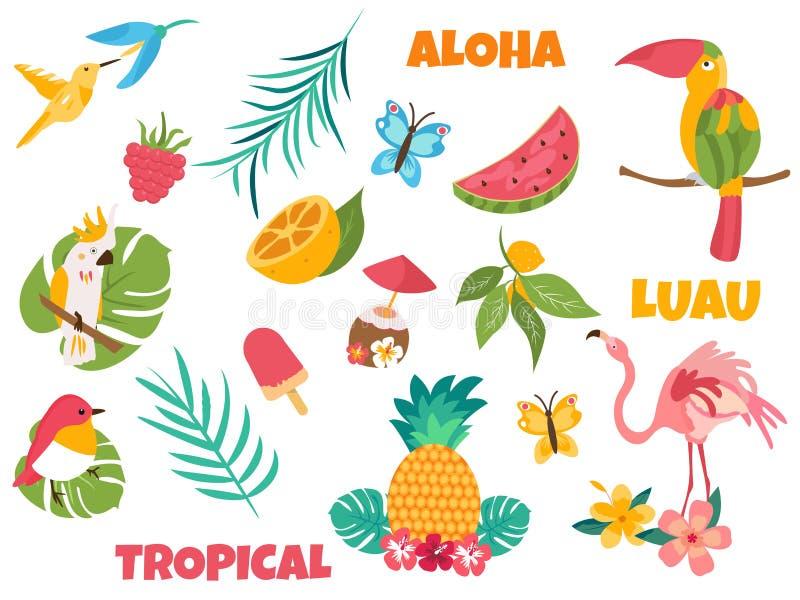 Большой комплект тропических птиц и элементов иллюстрация вектора