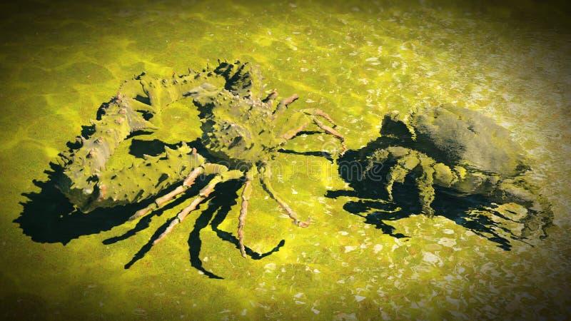 Большой краб на пляже бесплатная иллюстрация