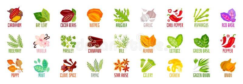 Большой набор значков condiment специи трав овощей чокнутых изолированных на белой предпосылке Красочный помечать буквами листьев бесплатная иллюстрация