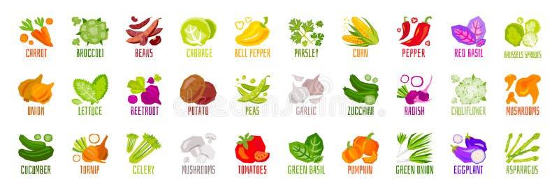 Большой набор значков condiment специи трав овощей чокнутых изолированных на белой предпосылке Красочный помечать буквами листьев иллюстрация штока
