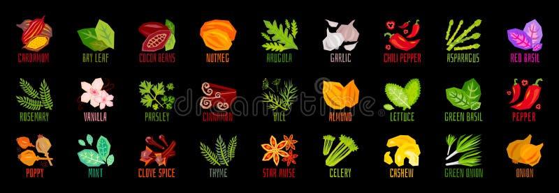 Большой набор значков condiment специи трав овощей чокнутых изолированных на черной предпосылке Красочный помечать буквами листье иллюстрация вектора