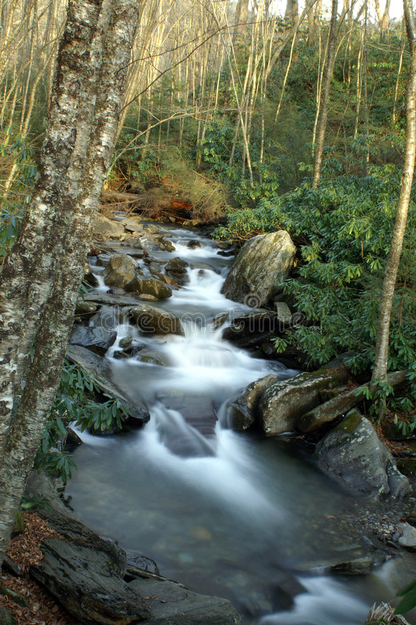 большой национальный парк гор закоптелый стоковое фото rf