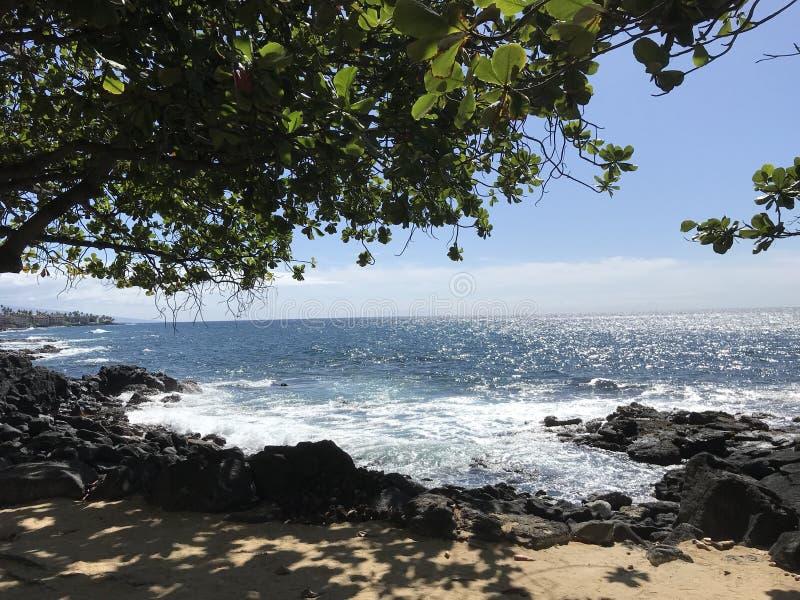 большой остров Гавайских островов стоковые фотографии rf